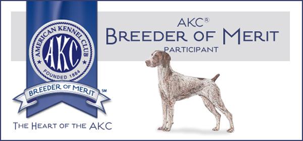 AKC German Shorthair Breeder of Merit
